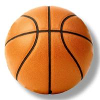 Basketball Teams Announced